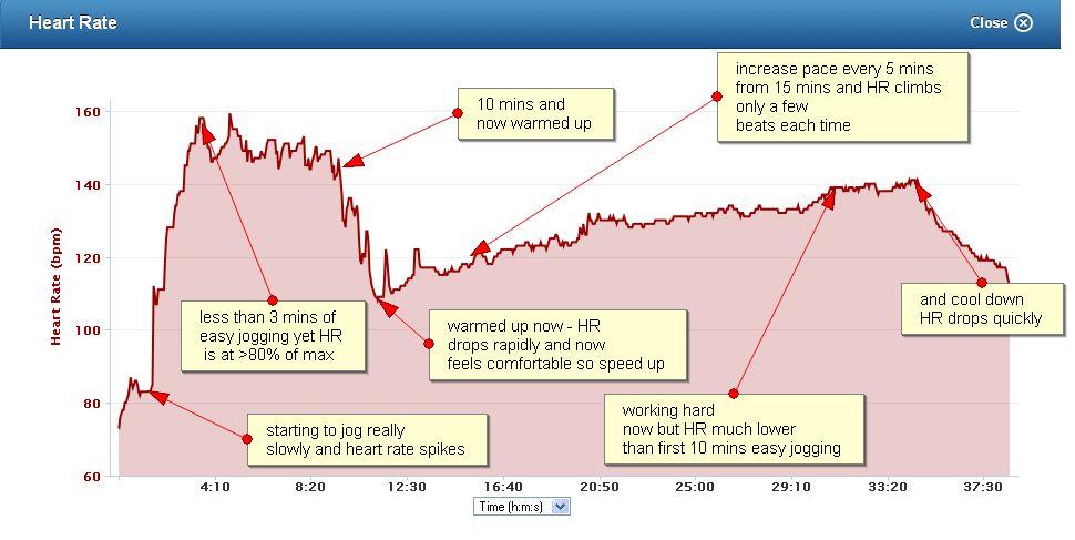 HR Graph